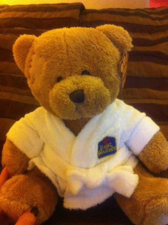 Hallmark Hotel Preston Leyland: our fury friend !