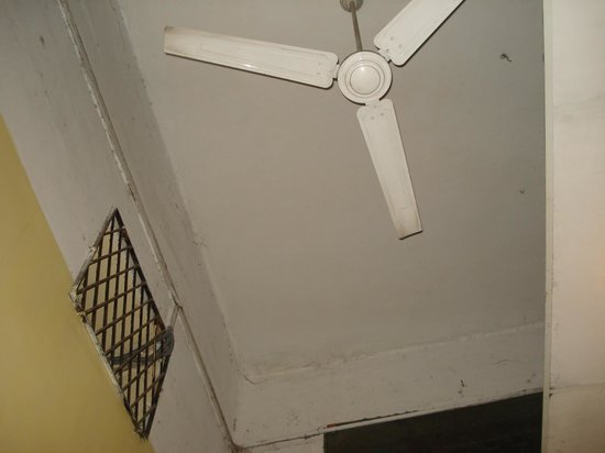 City Motel: fan and ceiling