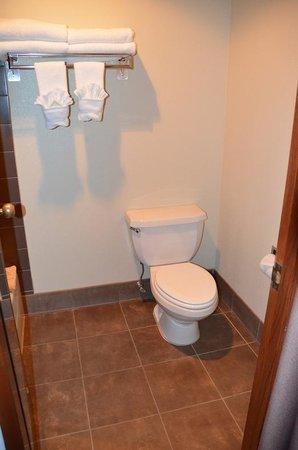 BEST WESTERN Elko Inn: Bathroom at  Best Western Elko