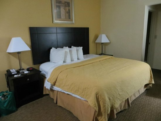 Quality Inn Tullahoma: room