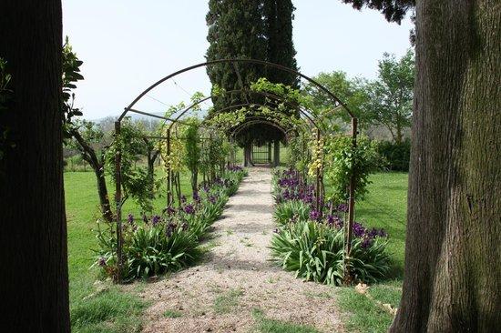 Tenuta di Argiano: Giardino Villa