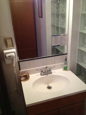 Chalet del Carmen Coyoacán: sink - good soap and shampoo provided
