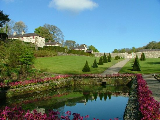 Plas Cadnant Hidden Gardens: Topiary and pond surrounded by Bergenia 'Overture'