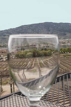 Nk'Mip Cellars Patio Restaurant: The view from the resto over the vineyard to Osoyoos Lake