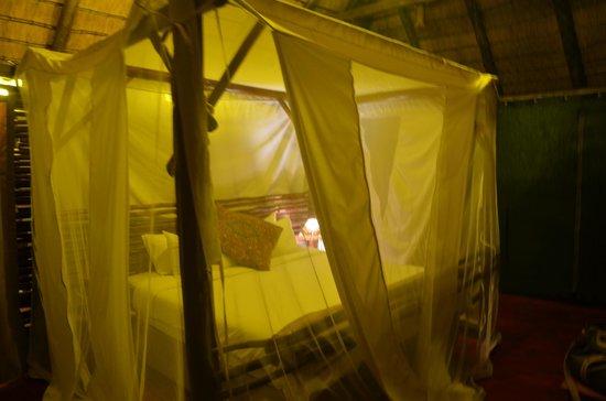 Muweti Bush Lodge 사진
