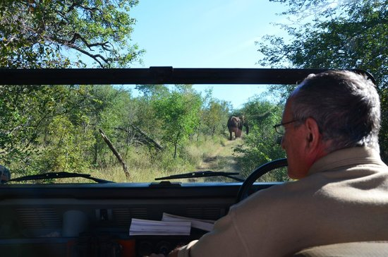 Muweti Bush Lodge: Game drive with Mike