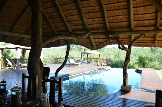 Muweti Bush Lodge: breakfast on the amazing terrace
