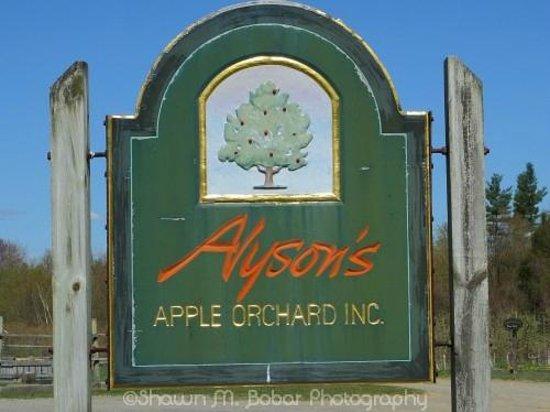 Alyson's Orchard: Self explanatory