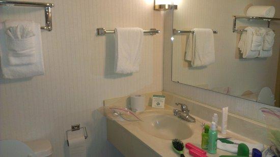 Mansion View Inn : Bathroom
