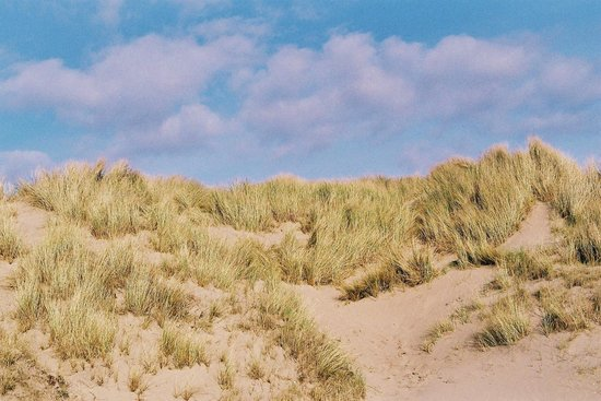 Pembrey Country Park: Cefn Sidan and Blue Sky