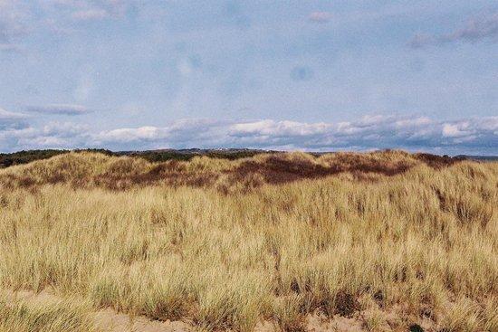 Pembrey Country Park: Cefn Sidan Sand Dunes