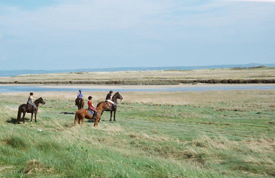 Pembrey Country Park : Riding Along the Coast