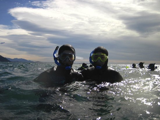 Dolphin Encounter : Provided with thick wetsuit and head attachment. Kept us warm in the open ocean