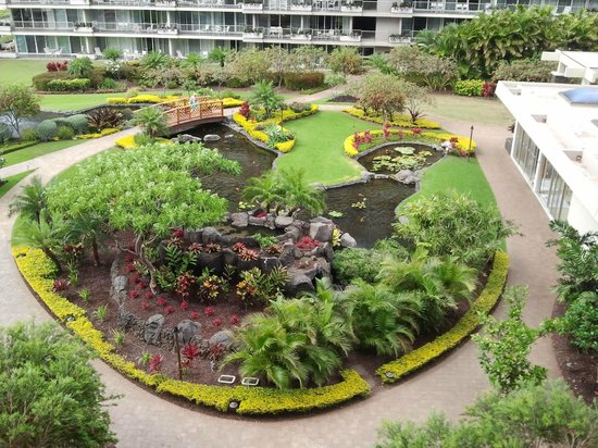 Aston at The Whaler on Kaanapali Beach: Koi pond between the two towers