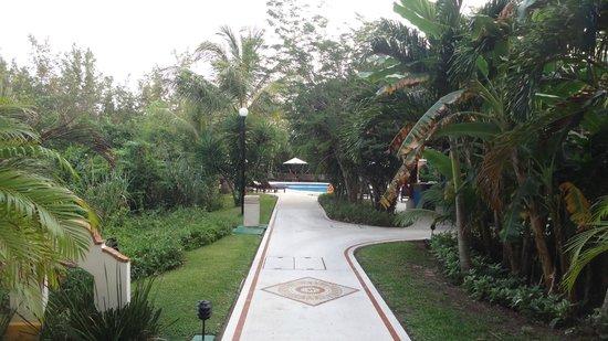Occidental Cozumel: Pasillo entre las habitaciones y la alberca de relajación