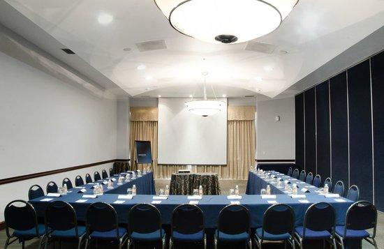 Novotel Monterrey Valle: Meeting Room