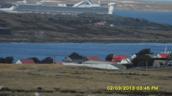 Sea Lion Island : Stanley with Star Princess in background