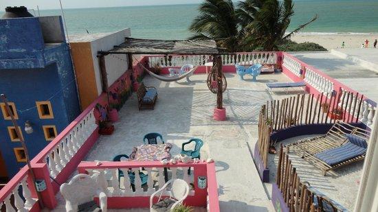 Casa Rosa : Shared Terrace