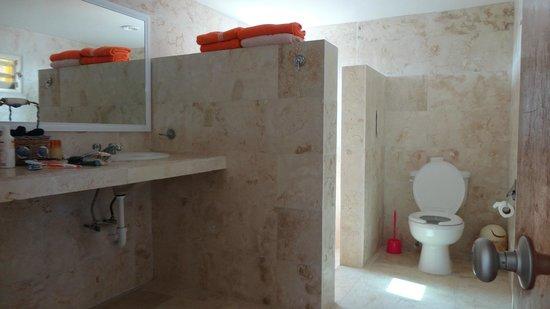 Casa Rosa : bathroom