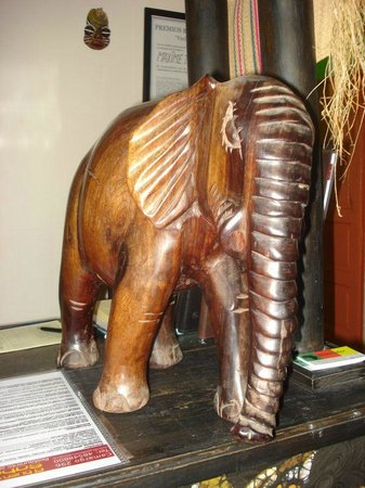 El Buen Sabor Africano: Nuestra mascota