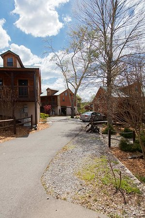 The Lodge At Tellico: driveway to lodges