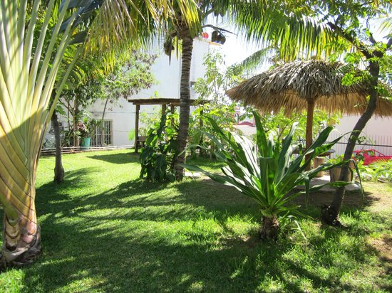 Hotel Rivera del Mar: jardines