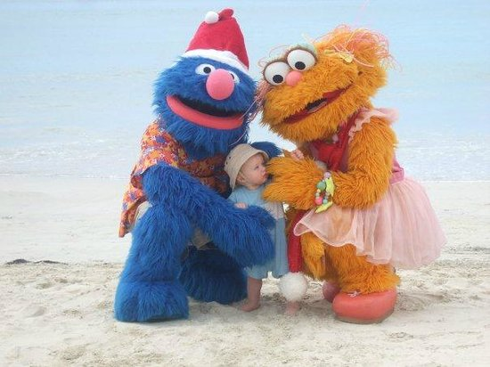 Beaches Turks & Caicos Resort Villages & Spa: Look who we found on the beach!