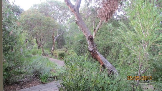 Stay Margaret River: View from room terrace