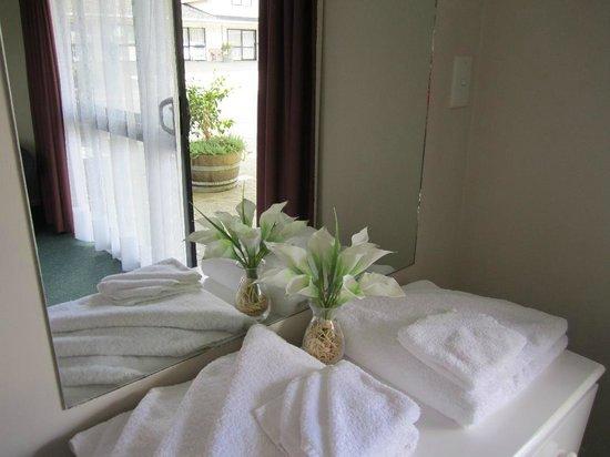 Camellia Court Motel : Studio