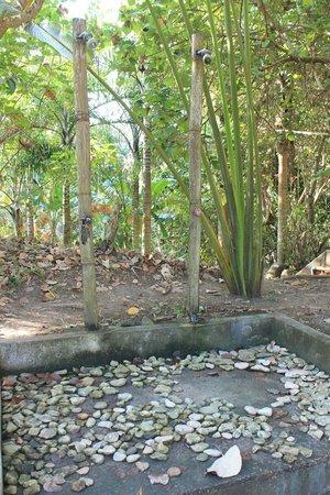 The Tamarind Tree Resort張圖片