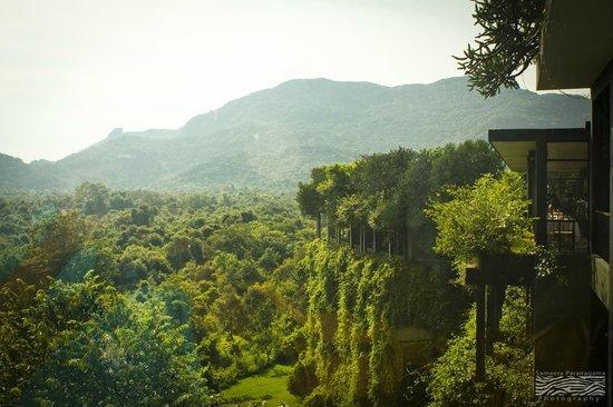 Heritance Kandalama: Hotel & grounds