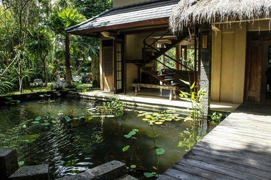 Koi and lotus pond picture of villa madu ubud tripadvisor for Koi pool villa
