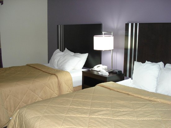 Comfort Inn Paducah: Beds and pretty purple wall