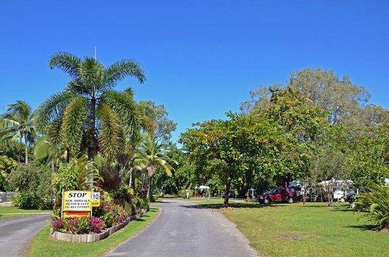 Pinnacle Village Holiday Park: Driveway