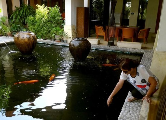 Sunshine Garden Resort: Fish ponds