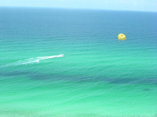 Majestic Beach Towers: Parasailers were below us!