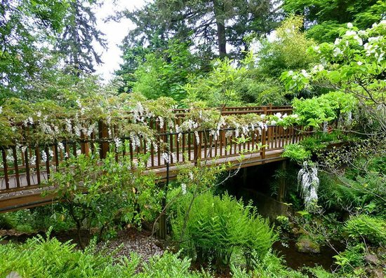 elk rock garden pedestrian bridge - Elk Rock Garden