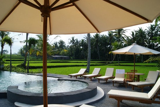 Bhanuswari Resort & Spa: Poolside