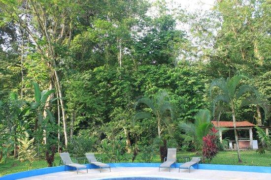 Hotel Lavas del Arenal: view