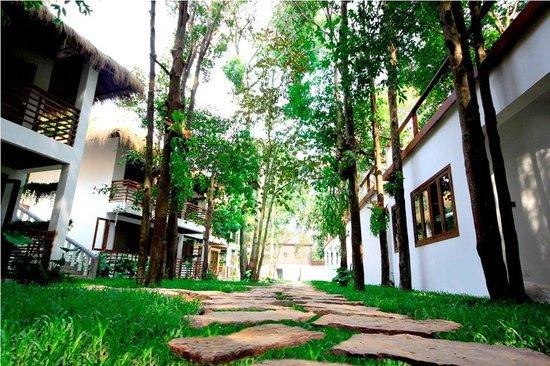 Natura Resort: Welcome to Natura experience