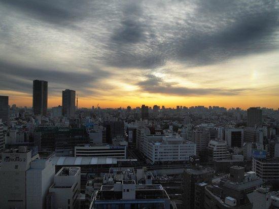 โรงแรมเมโทรโพลิแทนโตเกียว: from our room