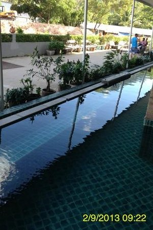 APK Resort & Spa: They call this a lap pool!