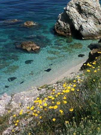 Camping Acquaviva : Angolo spiaggia Sansone