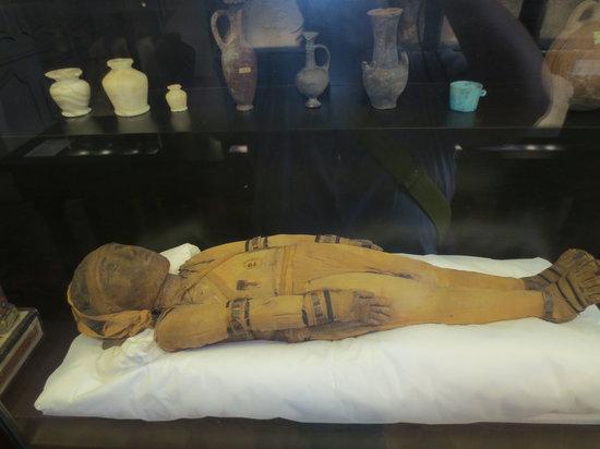 Musee Calvet: Kinder Mumie
