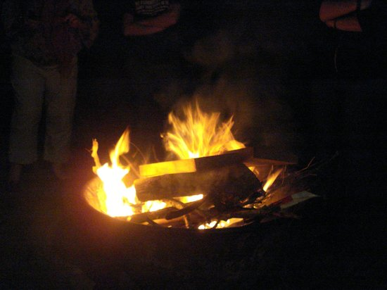 Amamoor Homestead: Our bonfire outside the chalet