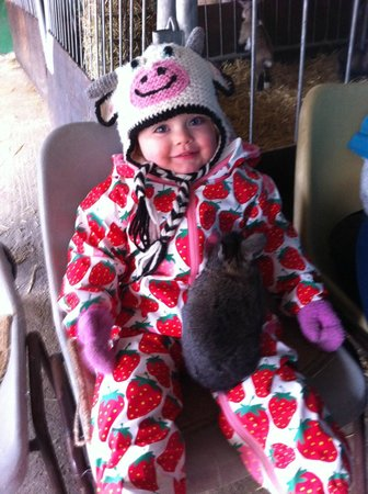My Little Farmer hugging a bunny - Picture of Easton Farm Park ...