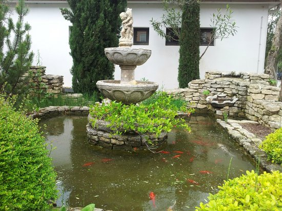 Hotel Lou Mistralou : Petit bassin avec poissons