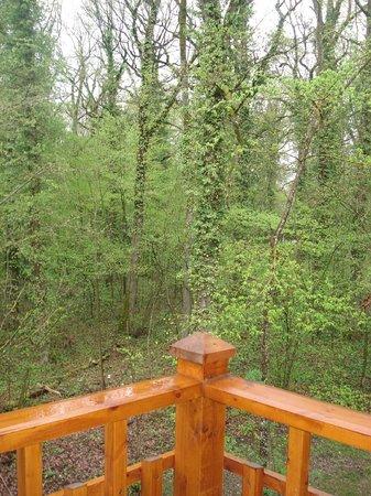 Le Pin Sylvestre : La vue depuis le balcon