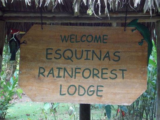Esquinas Rainforest Lodge: Holztafel
