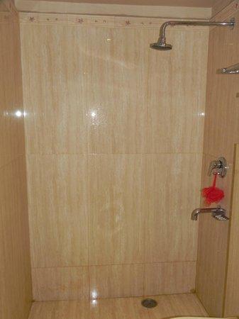 Hotel Heritage Inn: Bathroom 004